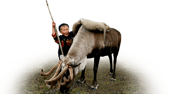 boy and reindeer